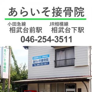 あらいそ接骨院は小田急線相武台前駅、JR相模線相武台下駅からお越しください。ご予約は046-254-3511